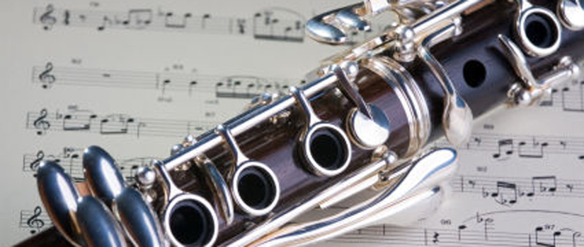 Clarinet or saxophone